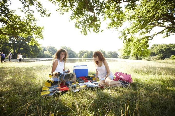 2 women having a picnic in the park