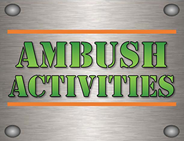 Ambush Paintball and Laser Tag
