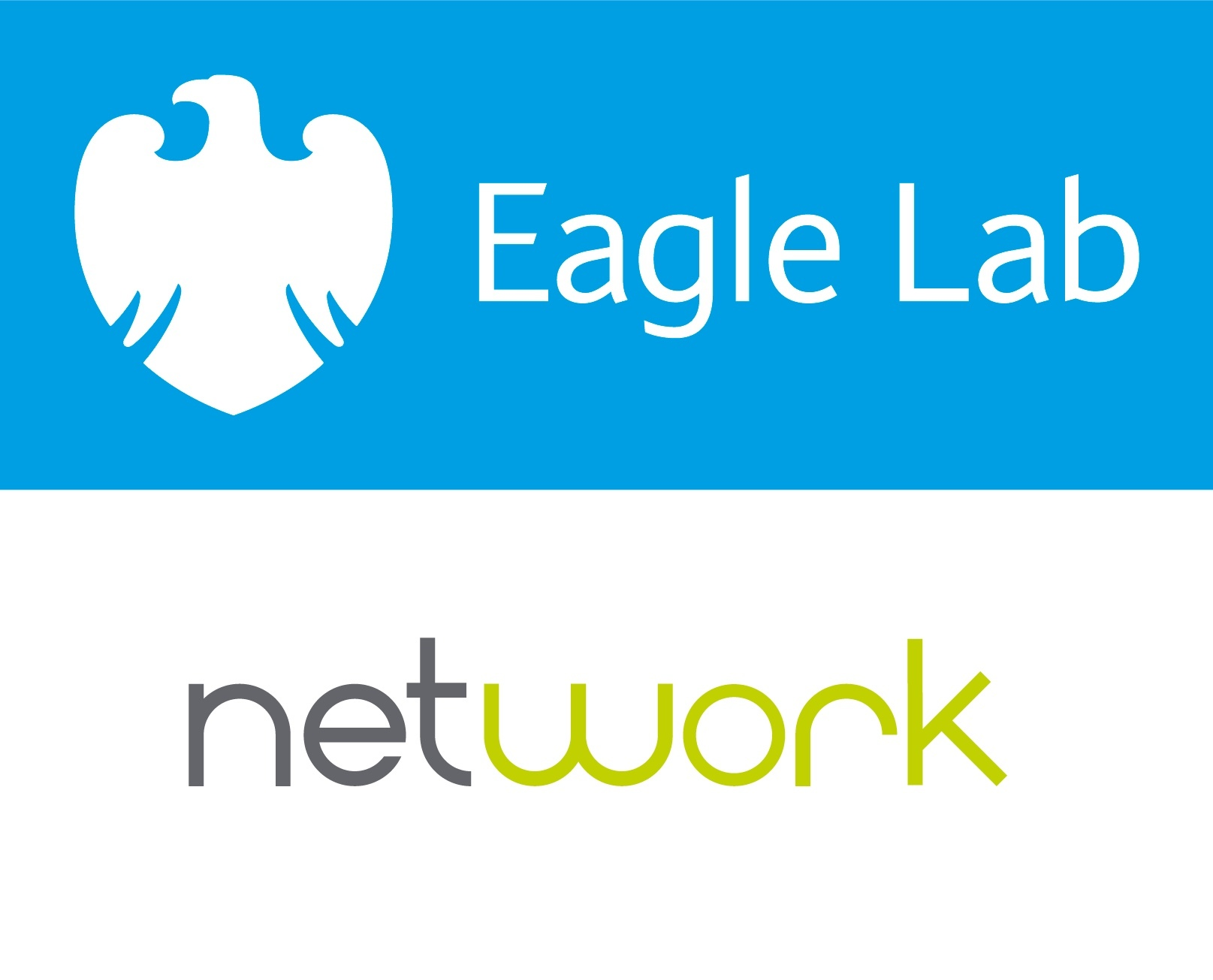 Network Eagle Lab