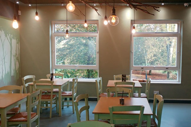 interior of Cafe Thrive